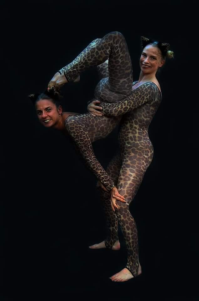 Circus Leopards